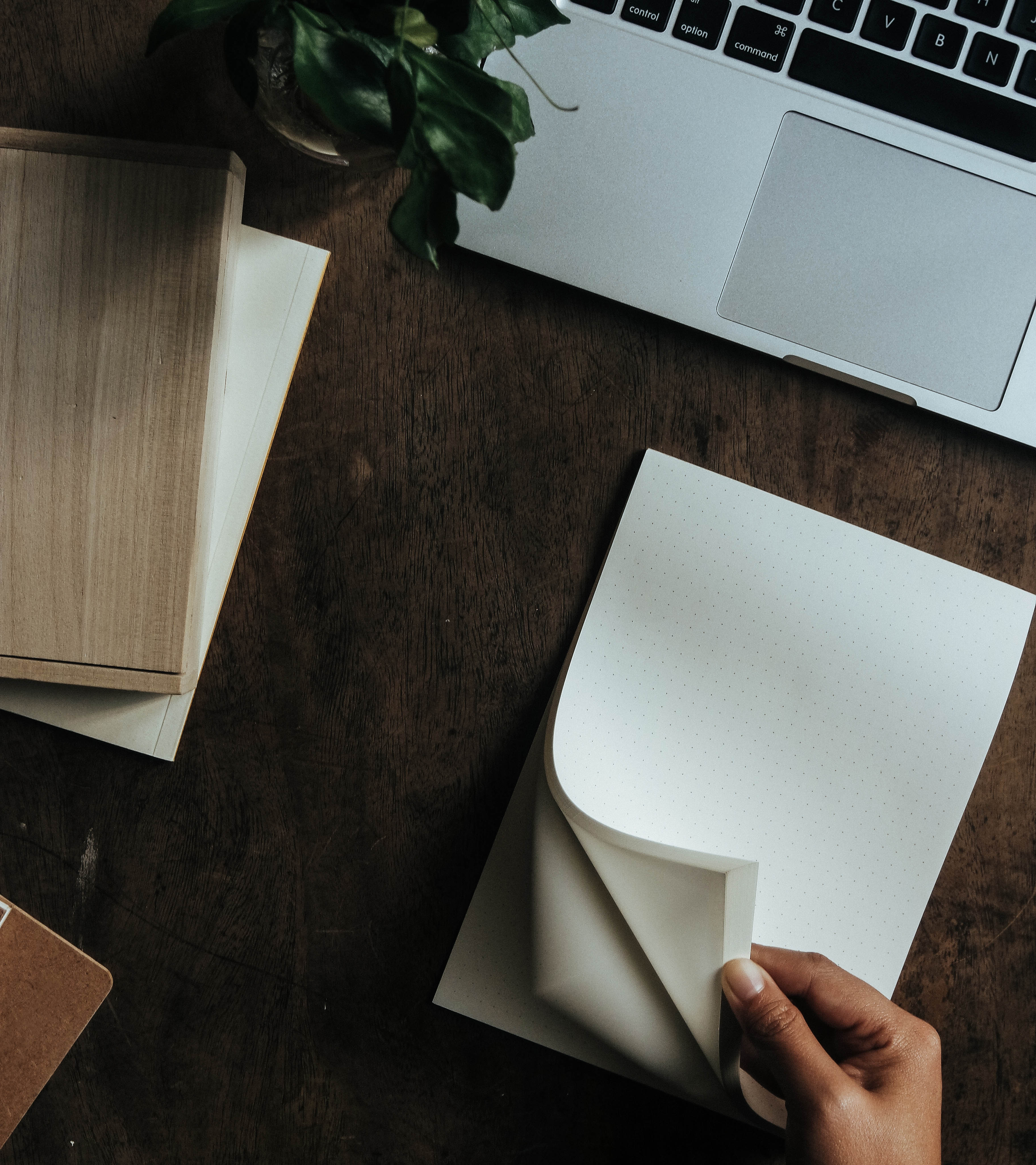 ¿Cómo escribir un guión de ceremonia civil?